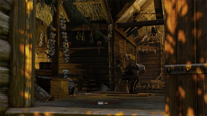 I played through the Witcher 3 and it ended badly – Rat